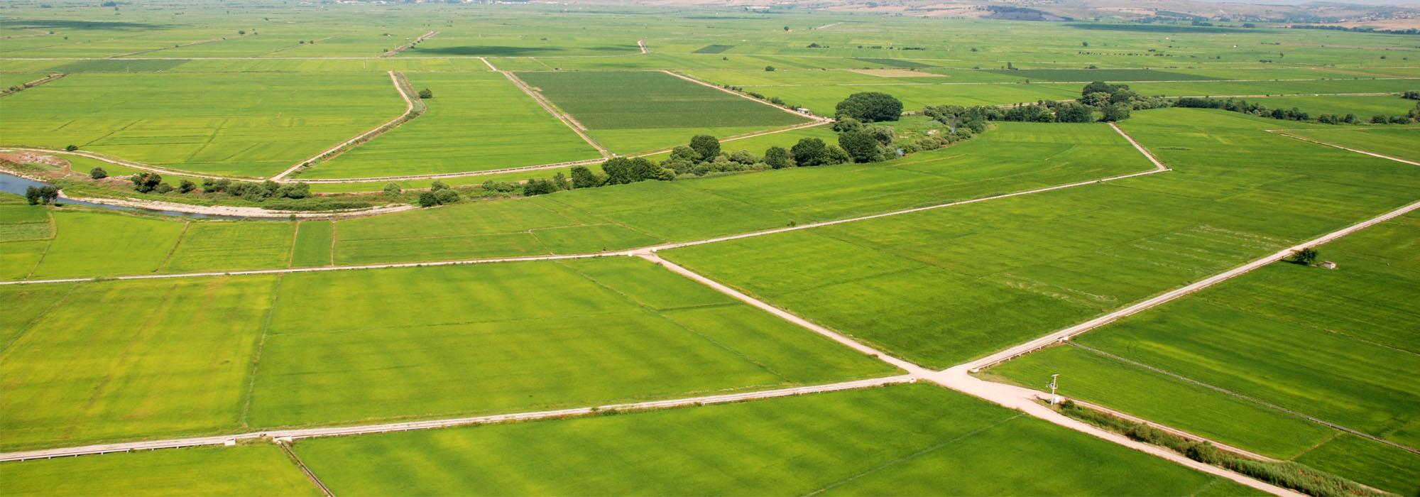Hazine Arazilerinin Topraksız Çiftçilere Kiraya Verilmesi Kanunu