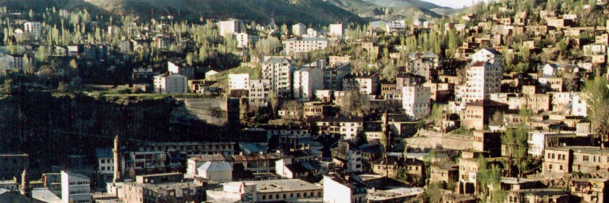 Bitlis Belediyesi Arsalarını Satıyor
