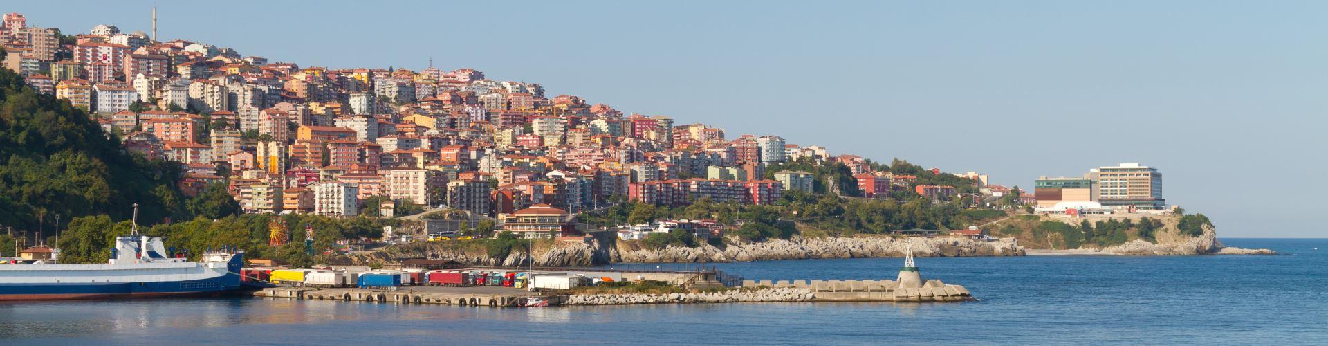 Zonguldak Merkez Seçim Sonuçları