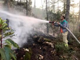 Bilecik Bayırköy'de Ormanlık Alanda Yangın