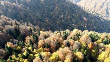 Zonguldak'ın Keşfedilmeyi Bekleyen Beldesi Gümeli