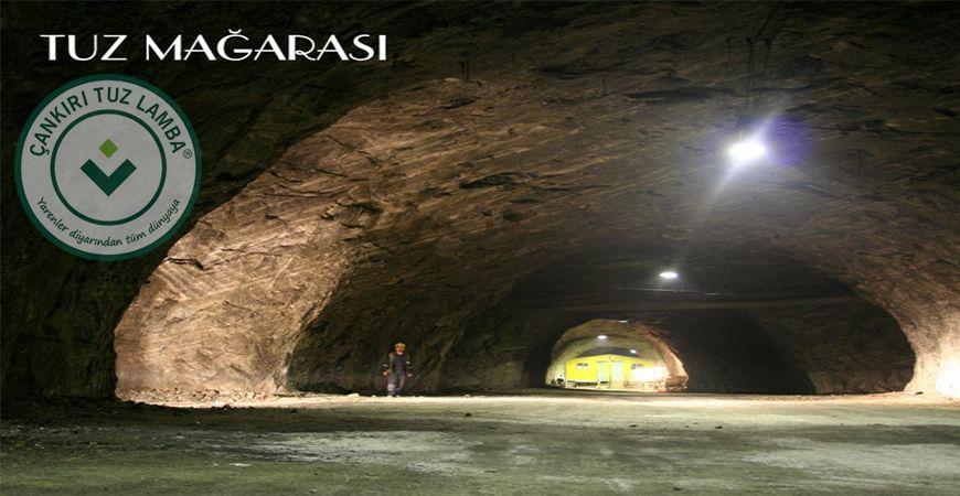 Tuz Mağarasına Hayvanların Kabartmaları İşleniyor