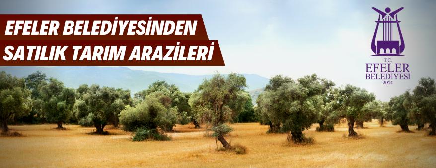 Aydın Efeler Belediyesince Tarım Arazileri Satışa Çıkarıldı