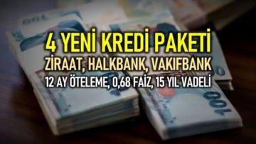 KAMU BANKALARI KREDİ PAKETLERİ AÇIKLANDI