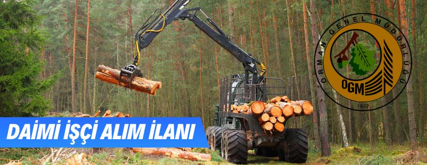 Orman Genel Müdürlüğü 274 Adet İşçi Alımı Yapılacak