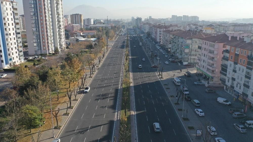 Büyükşehir'den ağaçlara 'kış' bakımı
