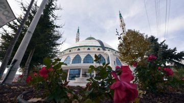 Selçuklu'da cami avluları yeşile bürünüyor