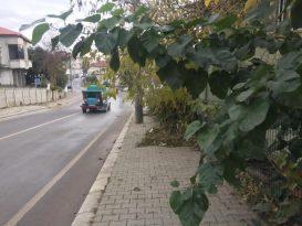Serdivan'da kışa hazırlık çalışmaları