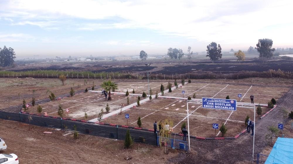 Tarsus'ta hayvan mezarlığı hizmete girdi