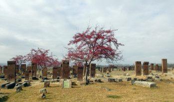 Bitlis Ahlat'ın Tarihi Mekanları Sessizliğe Büründü