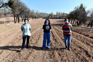 Ankara Nallıhan'da Boş Araziler Tarıma Kazandırıyor