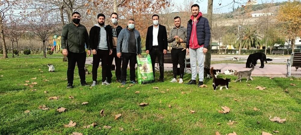 Başkan Şayir, sokak hayvanlarını unutmadı