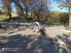 Burhaniye'de Belediye Can dostlarını unutmadı
