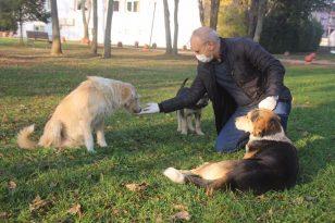 Sakarya Emniyet Müdürü Sokak Hayvanlarını Elleriyle Besledi