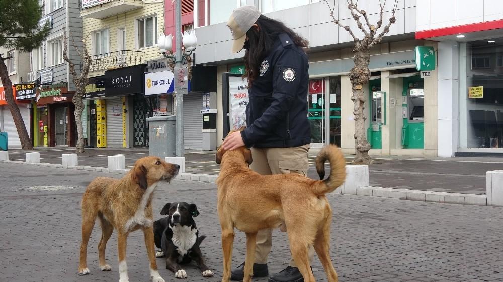 HAYDİ polisleri kısıtlamada sokak hayvanlarını besledi