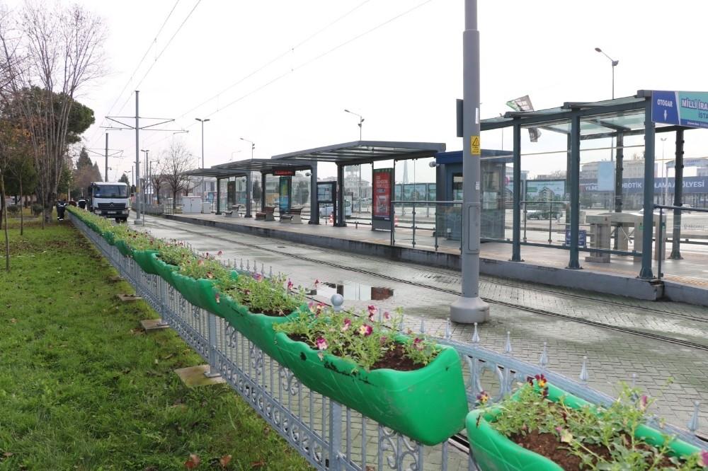 Hercai menekşeler tramvay duraklarına renk getirdi