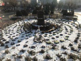 Iğdır'da mevsimin ilk karı sevinçle karşılandı