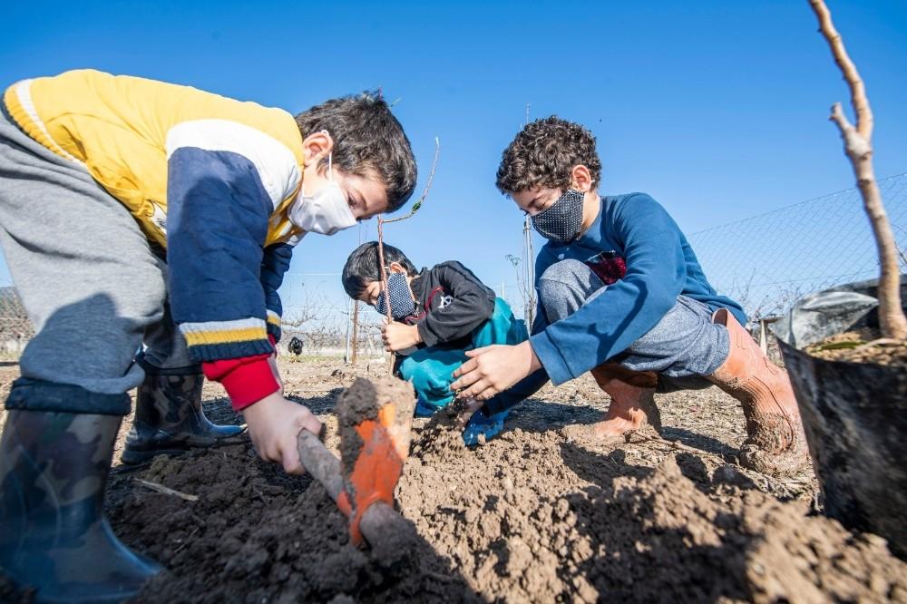 İzmir'de 2020 yılında 363 bin meyve fidanı dağıtıldı