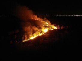 Milyon dolarlık kamışların neden yandığı araştırılıyor