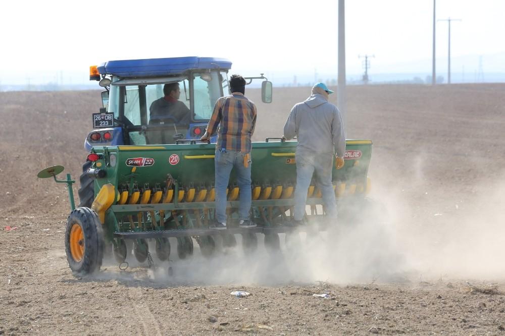 Odunpazarı Belediyesi'nin 650 dekarlık tarım arazisinde arpa ekimine başladı