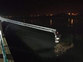 Osmancık'ta nehre düşen köpek kurtarıldı