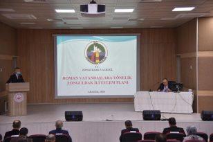 Roman Vatandaşlara Yönelik Eylem Planı