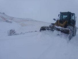 Van Saray'da Kar Hayatı Olumsuz Etkiledi
