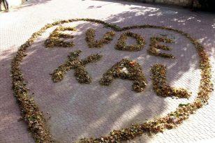 Sonbahar yapraklarıyla 'Evde Kal' yazdılar