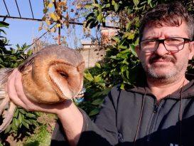 Yaralı bulduğu nadir görülen baykuşun tedavisini yapıyor