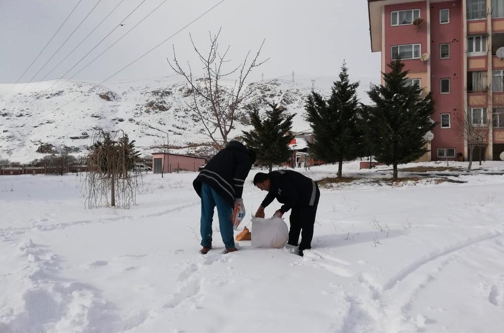 Adilcevaz Belediyesi doğaya yiyecek bıraktı