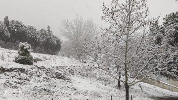 Ayvalık'ta 2 yıl sonra kar yağışı