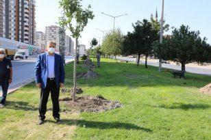"""Başkan Mustafa Palancıoğlu: """"Daha yeşil bir Melikgazi için fidan değil ağaç diktik"""""""