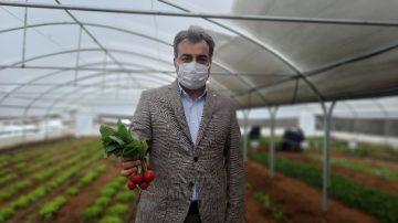 Bu serada üretilen sebzeler ihtiyaç sahiplerine ulaştırılıyor