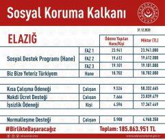 Elazığ'da Covid-19 destekleri kapsamında  185 milyon 863 bin TL ödendi