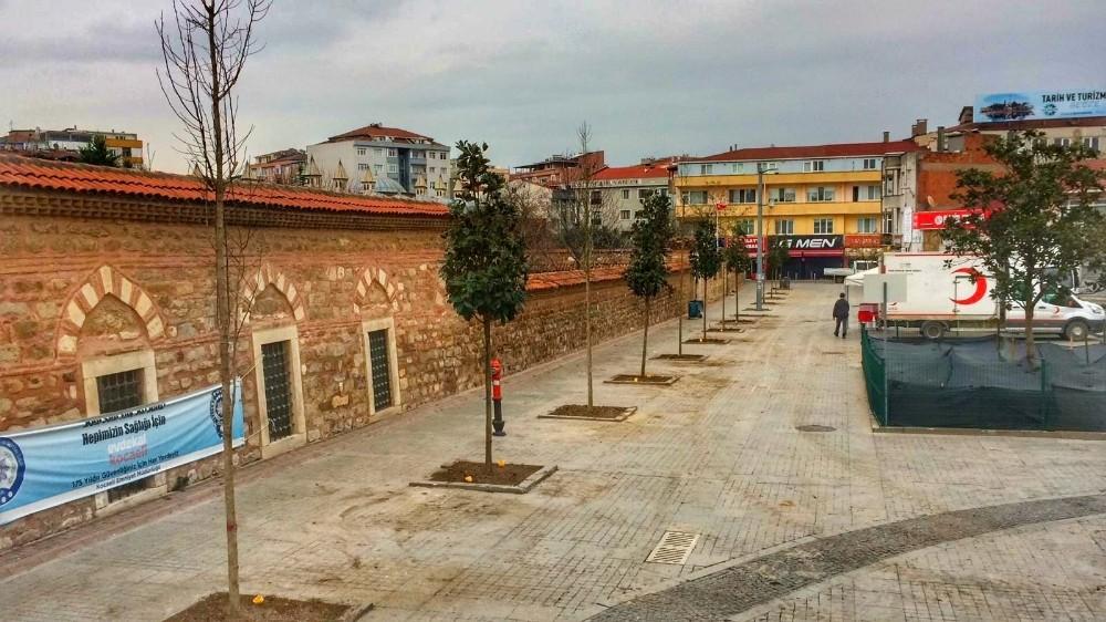 Gebze'de kent meydanı manolya ağaçları ile süsleniyor