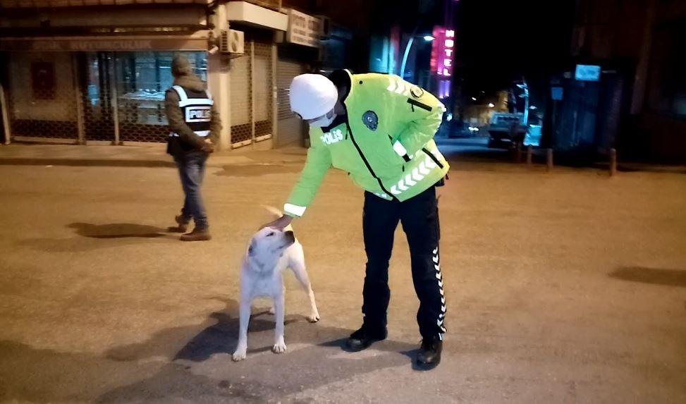 Polisin köpeğe şefkati yürekleri ısıttı